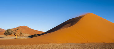 Dune 45 Photographie stock