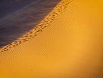 Dune 45 Photos libres de droits