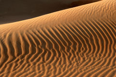 Dune Abstract Royalty Free Stock Photos