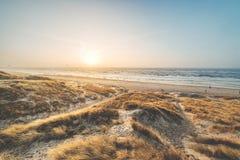 Dune alla costa danese alla luce uguagliante fotografie stock libere da diritti