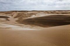 Dune alla spiaggia vicino alla villa Gesell Fotografia Stock