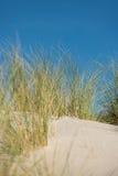 Dune avec le sable et l'herbe Photos stock