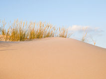 Dune background detail Stock Images