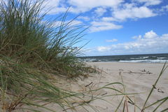 Dune of the Baltic Sea beach, Poland Stock Image