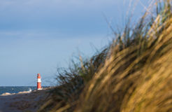 Dune on the Baltic Sea Stock Images