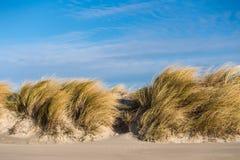 Dune on the Baltic Sea Stock Photo