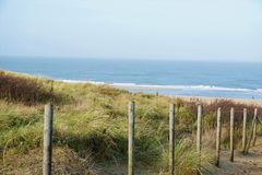 Dune at the beach of Scheveningen Royalty Free Stock Images
