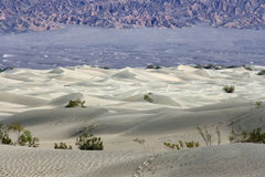 Dune bianche in Death Valley NP Fotografia Stock