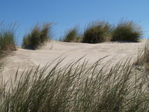 DUNE AND BLUE SKY Stock Image