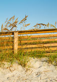 A Dune Boardwalk and Sea Oats Stock Images