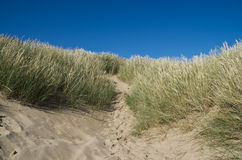 Dune Royalty Free Stock Photography