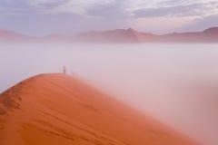 Dune 45 climbing Royalty Free Stock Photos