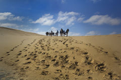The dune. Climbing the sand dune leaving footprints royalty free stock photo
