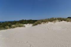 Dune commoventi Immagini Stock Libere da Diritti