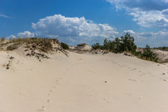 Dune commoventi Fotografie Stock Libere da Diritti