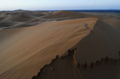 Dune commoventi del deserto ad alba Immagini Stock