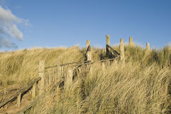 Dune conservation. Path and steps through sand dunes, Troon, Ayrshire, part of the dune restoration programme to counter erosion and protect the fragile Royalty Free Stock Photos