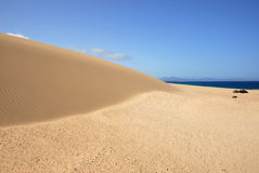 The dune of Corralejo beach Stock Image
