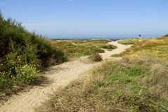 Dune at the Cotiniere in France. With sandy path stock photos