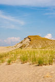 Dune in Curonian Spit Royalty Free Stock Photo