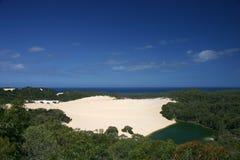 Dune dans la forêt tropicale Image stock