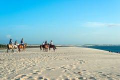 Dune de coucher du soleil, Jericoacoara, état de Ceara, Brésil Photos libres de droits
