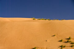 Dune de désert, sables de Wahiba, Oman image libre de droits