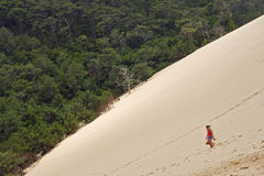 Dune DE Pyla Stock Foto's