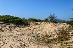 Dune de sable Photographie stock libre de droits