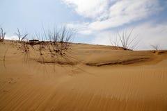 Dune de sable avec le nuage et le ciel Photo stock
