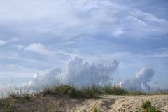 Dune de sable avec le roseau des sables Photos stock