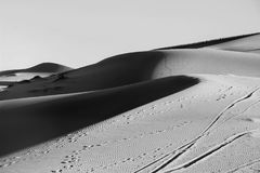 Dune de sable dans le désert en noir et blanc Image stock