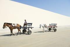 Dune de sable de cheval et de chariot Jericoacoara Brésil photo libre de droits