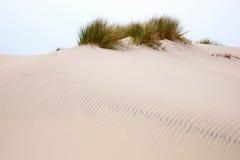 Dune de sable de roulement photo libre de droits