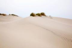 Dune de sable de roulement photographie stock