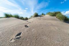 Dune de sable et pieds de traces avec l'herbe et le ciel bleu image libre de droits