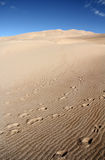 Dune de sable grande aux Etats-Unis Image stock