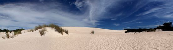 Dune de sable panoramique Photos stock
