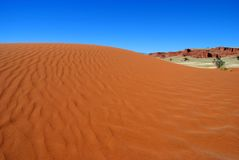 Dune de sable rouge Images stock