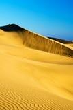 Dune de sable sur le coucher du soleil Photo libre de droits