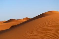 Dune del deserto del Sahara Fotografie Stock Libere da Diritti