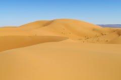 Dune del deserto della sabbia dell'Africa Fotografia Stock Libera da Diritti