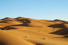 Dune del deserto della sabbia dell'Africa Fotografie Stock
