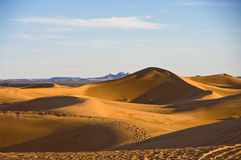 Dune del deserto di Sahara Fotografia Stock