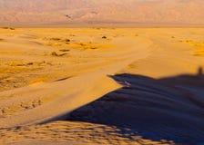 Dune del Mesquite in Death Valley immagini stock