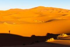 Dune del Sahara in Merzouga, Africa - la grande duna di Merzouga fotografie stock