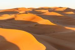 Dune del Sahara in Merzouga, Africa - la grande duna di Merzouga immagine stock libera da diritti