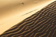 Dune del Sahara in Merzouga, Africa - la grande duna di Merzouga fotografia stock libera da diritti