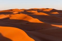 Dune del Sahara in Merzouga, Africa - la grande duna di Merzouga fotografie stock libere da diritti