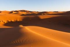 Dune del Sahara in Merzouga, Africa - la grande duna di Merzouga immagini stock libere da diritti
